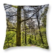 The Forest Path Throw Pillow by David Pyatt
