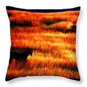 The Golden Grain Of A Sunset Dream Throw Pillow