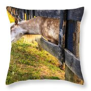 The Grass Is Greener... Throw Pillow