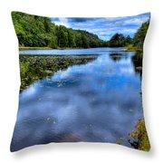The Majestic Bald Mountain Pond Throw Pillow