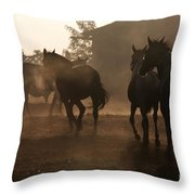 The Misty Morning Throw Pillow