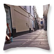 The Observer Throw Pillow