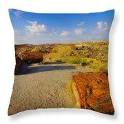 The Painted Desert Throw Pillow