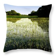 The Pantanal Throw Pillow
