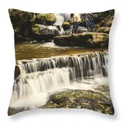 The Photographer's Quest V Throw Pillow