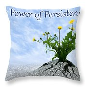 The Power Of Persistence Throw Pillow