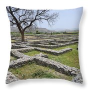 The Ruins Of Sirkap City At Taxila In Pakistan Throw Pillow