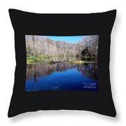 River - Reflection Throw Pillow