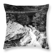 The Sinks Smoky Mountains Bw Throw Pillow