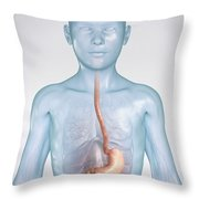 The Stomach Child Throw Pillow