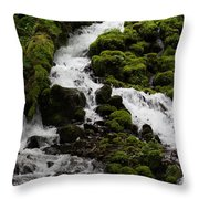 The Water Snake Throw Pillow