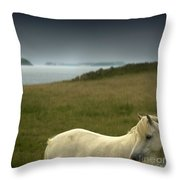 The Welsh Pony  Throw Pillow