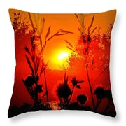 Thistles In The Sunset Throw Pillow
