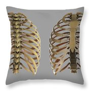 Thoracic Cage Throw Pillow