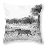 Three Cheetahs At Mashatu Throw Pillow