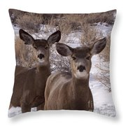Three Does   #7576 Throw Pillow