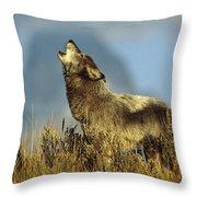 Timber Wolf Howling Idaho Throw Pillow