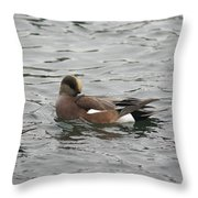 Tiny Duck Cleaning 3 Throw Pillow