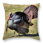 Tom Turkey Throw Pillow