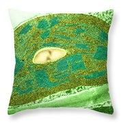 Tomato Chloroplast, Tem Throw Pillow