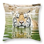 Top Cat Throw Pillow