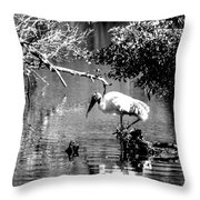 Tranquility Bw Throw Pillow