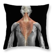 Trapezius Muscle With Skeleton Throw Pillow