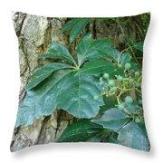Wildwood Wonder Throw Pillow