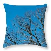 Tree Profile Throw Pillow