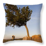 Tree Rock Wyoming Throw Pillow