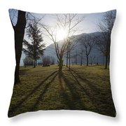 Trees In Backlit Throw Pillow