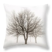 Trees In Winter Fog Throw Pillow by Elena Elisseeva