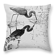Tri-colored Meal Bw Throw Pillow
