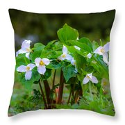 Trillium 16 Throw Pillow