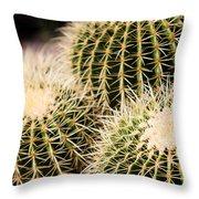 Triple Cactus Throw Pillow