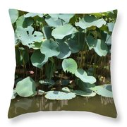 Water Plant Throw Pillow