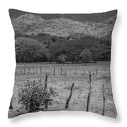 Tropical Forest Throw Pillow