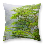 Tropical Forest, Seychelles Throw Pillow