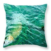Catching Flies Throw Pillow