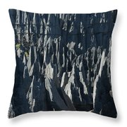 Tsingy De Bemaraha Madagascar Throw Pillow