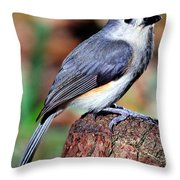 Tufted Titmouse Parus Bicolor Throw Pillow