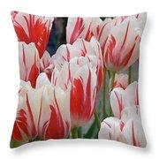 Tulips 8 Throw Pillow