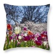 Tulips At Dallas Arboretum V94 Throw Pillow