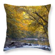 Turn Turn Turn Throw Pillow