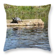 Turtle Float Throw Pillow