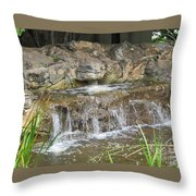 Turtle Head Falls  Throw Pillow