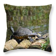 Turtle On A Raft Throw Pillow