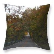 Twice The Speed Of Autumn Throw Pillow