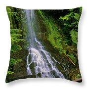 Twin Falls Creek Mount Rainier Throw Pillow