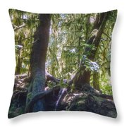 Twisted Around A Rock Throw Pillow